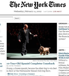 Stump in der New York Times